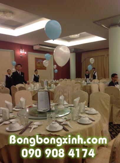 Bóng bàn tiệc 040