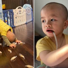 Chị Văn Thùy Dương sinh hai cậu ấm sinh đôi tại nhà