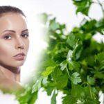 Trị tàn nhang bằng rau mùi hiệu quả bạn đã biết chưa?